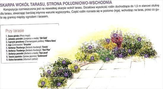 Zdjecie Nr 32 W Galerii Rabaty W Ogrodzie Kompozycje Projekty I Inspiracje Deccoria Pl Green Garden