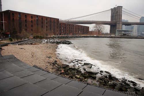 How Dumbo's Arts Spaces Have Recovered From the Storm