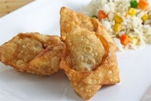 Veggie Meal-Maker - Asian Wontons - vmm