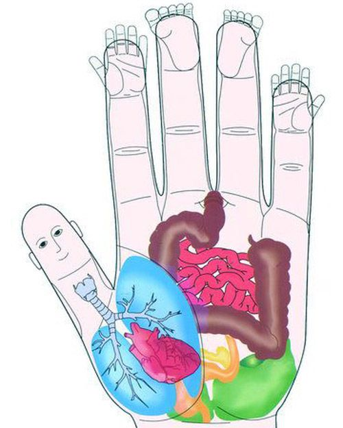 Acupressure is a holistic, noninvasive way to relieve pain in the body. If you have a sore area, you can address it specifically by finding the corresponding part of the hand. For example, for lower-back pain, press on the back of the hand right between the middle and fourth finger. Once you find the proper point in the hand, apply pressure for a few seconds. The results of acupressure are instant and in some patients, they are so dramatic it seems like magic.