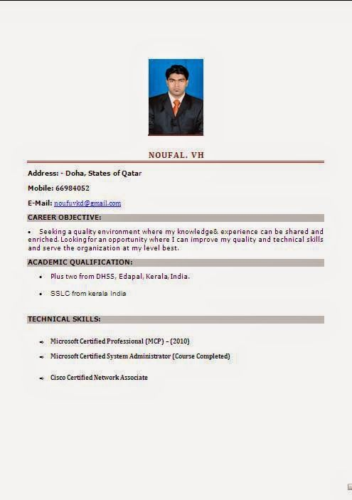 curiculum vitae Sample Template Example of Resume \/ CV Format with - resume format india