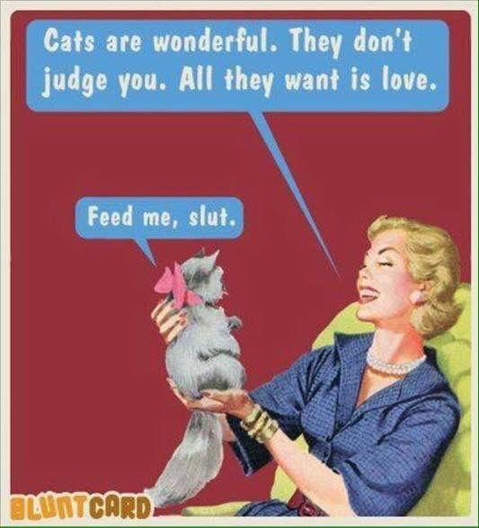 Makes me want a cat.