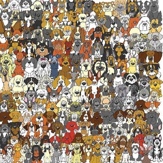 De panda is terug! Hoe snel kan jij hem vinden? - Het Nieuwsblad