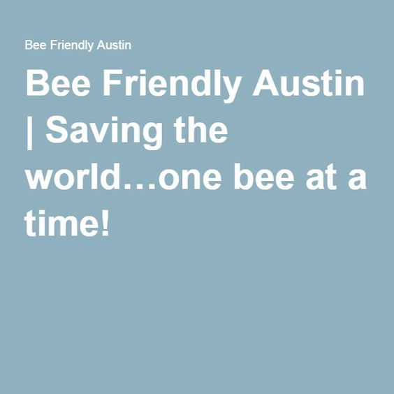 Bee Friendly Austin   Saving the world…one bee at a time!