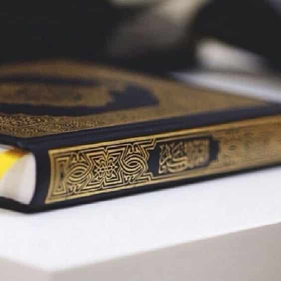 سورة قرآن Surah Quran بدنا المنشور يلف الدنيا في هذا اليوم المبارك و الليلة الكريمة نبشركم بانطلاق موقع سورة قرآن Https Quran Wallpaper Quran Sharif Quran