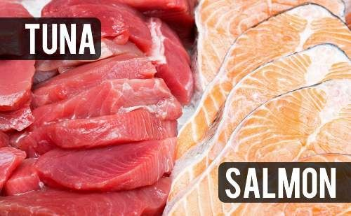 What Does Salmon Taste Like Is It Healthy Salmon Nutrition Salmon Healthy Fish