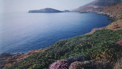 Delphini Bay near Kini in Spring | Greece