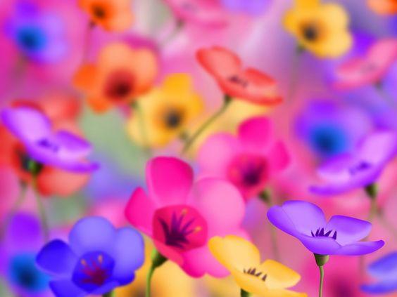bunte Bilder, Blumen Hintergrundbilder, positive Vektor, hellen Hintergründen