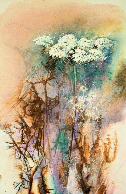 Summer Hogweed - Ann Blockley SWA - watercolor