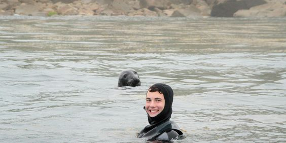 Snorkel with seals on the Isles of Scilly