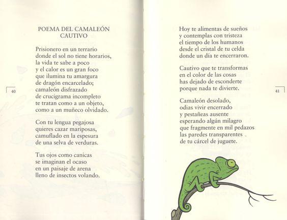 Poemas En Espanol Para Ninos Cortos: Child, Bilingual Classroom, Dual Language, Language Super, Elementary Spanish, Espaňol Textos, Classroom Ideas, Espanol Para Ninos, Language Arts