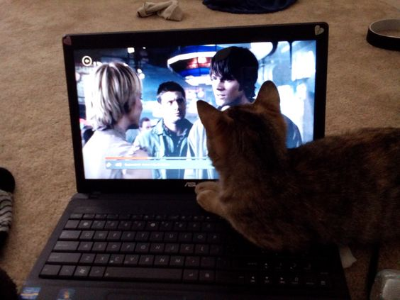 Aria pauses Supernatural every single time Sam is on screen >.>