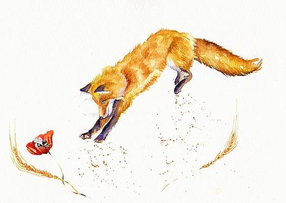 Fox pouncing on a bee - love this!
