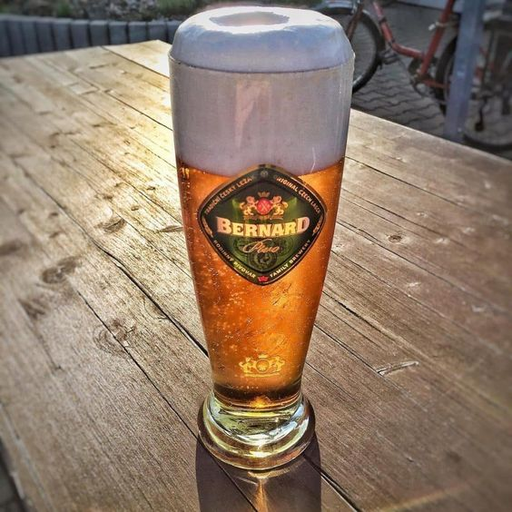 Bia Bernard Bohemian Lager 4,9% - Chai 330ml