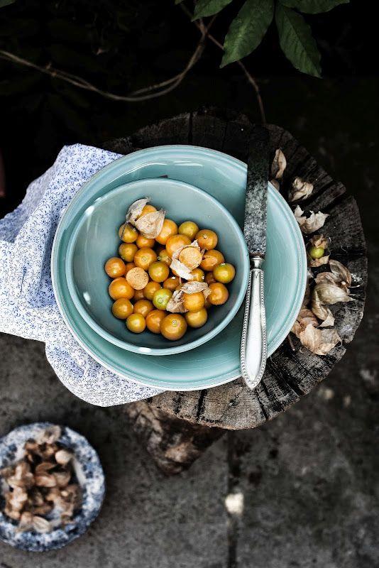 gooseberries  Pratos e Travessas