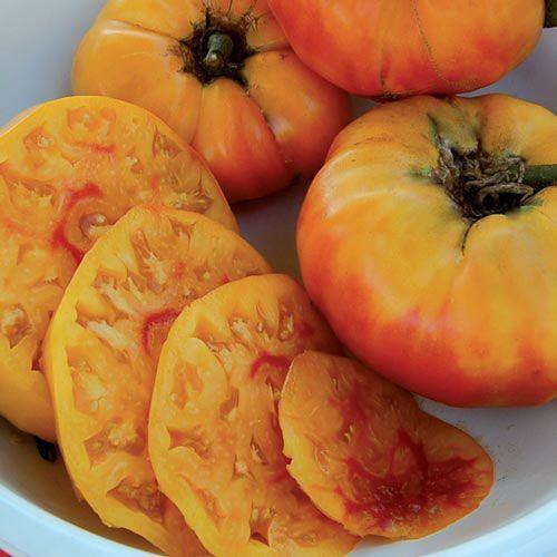 10 Incredible Heirloom Tomatoes To Grow In Your Garden Growing