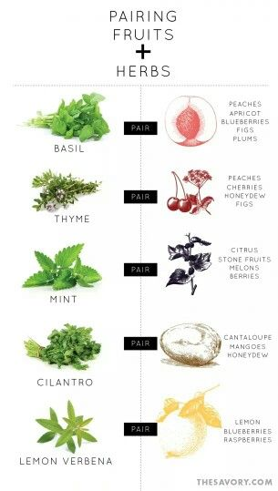 Pairing fruits and herbs