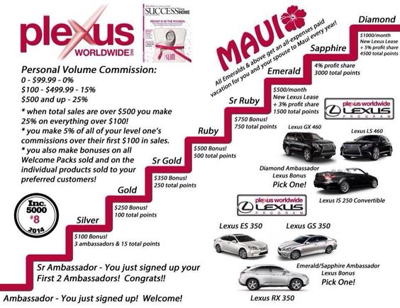 The possibilities with Plexus are endless. Want to know more? www.beplexus.net