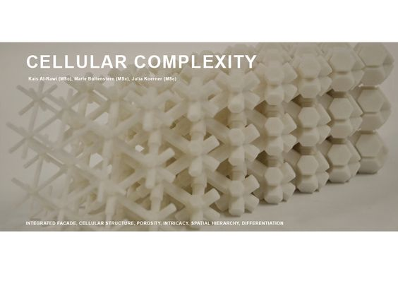 CELLULAR COMPLEXITY