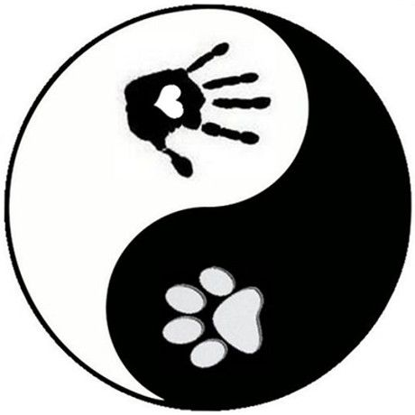 Image result for animal paw logo