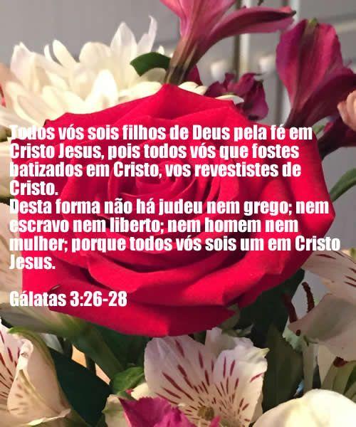 Todos nós somos Filhos de Deus.