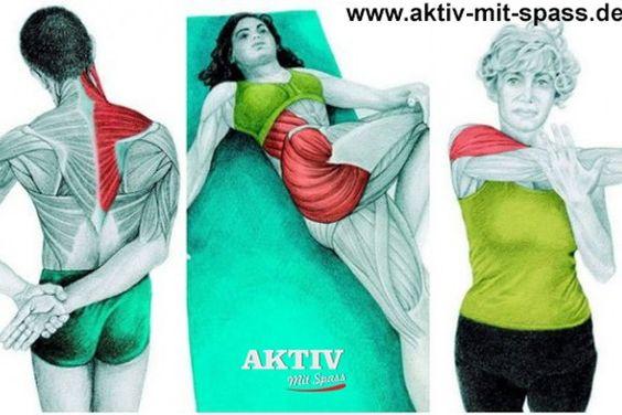 Diverse Dehenuebungen und welche Körperpartien diese zugute kommen. Dehnen der Muskulatur