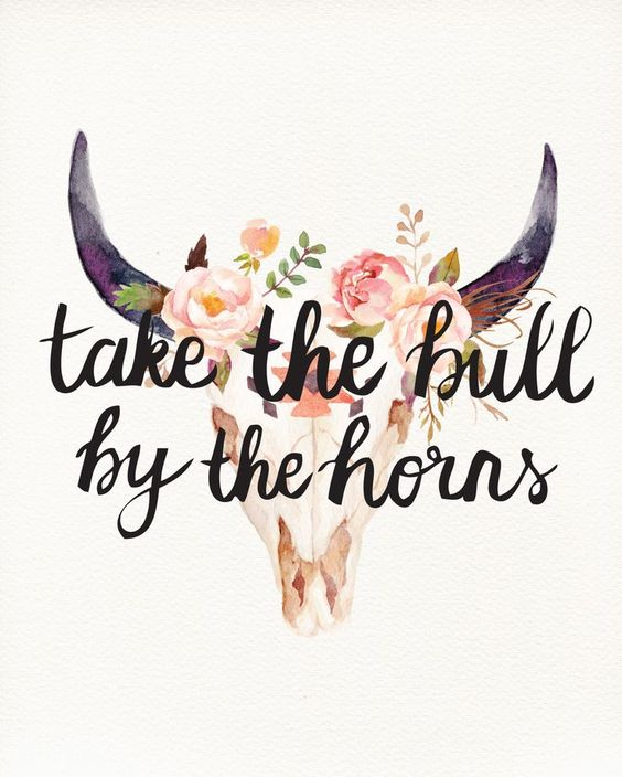 """Take the bull by the horns."":"