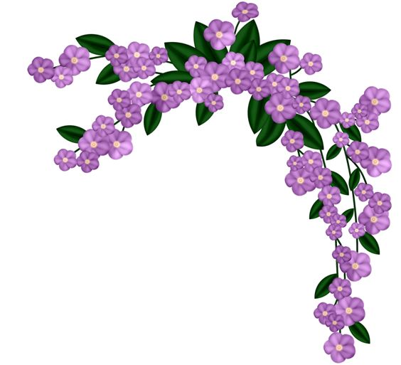 PURPLE FLOWERS: