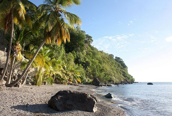 Dominica's natural beauty and profusion around Rhys as she grew up made a great impression. When, in later life, she wrote about the island, her language is infused with nostalgia and loss but also with an insider's understanding of its dangers and violence.