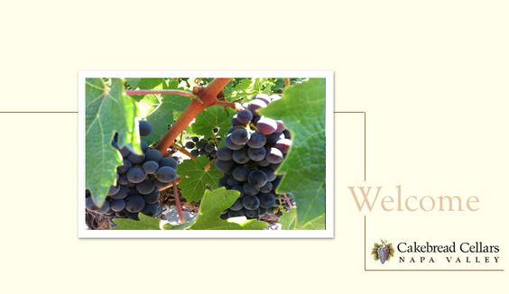 Welcome to Cakebread Cellars
