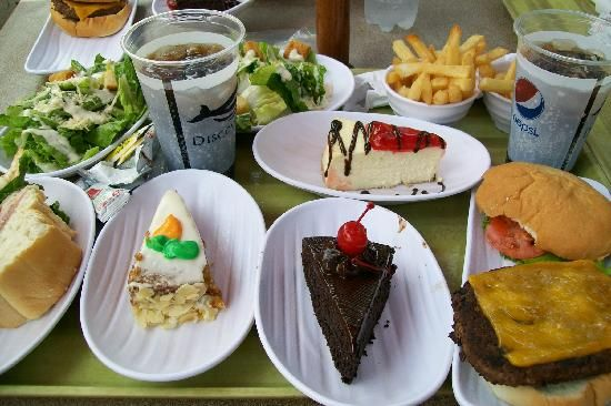 Image result for discovery cove orlando food