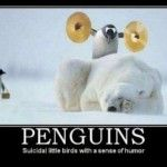Penguins…  http://forkingfunny.com/2013/03/19/penguins/