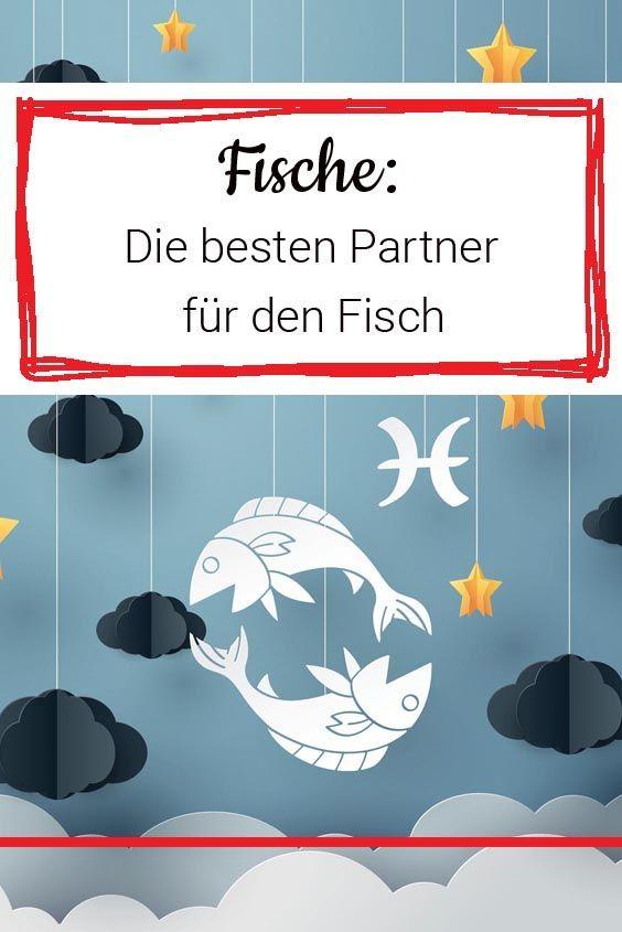 Fisch Und Löwe Freundschaft - Best Trend Inspiration and