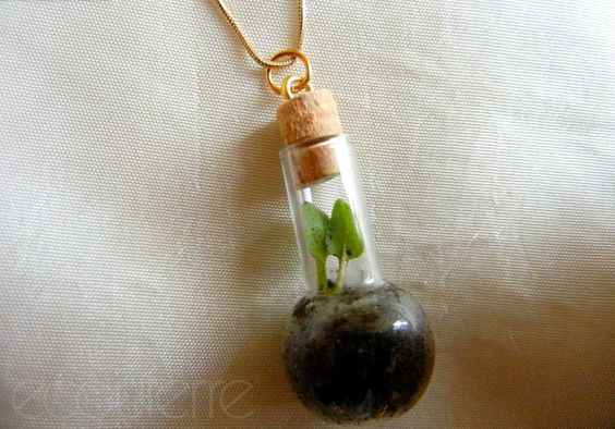 http://www.ecouterre.com/diy-how-to-make-a-beautiful-terrarium-necklace-to-give-as-gift-for-the-holidays/diy-terrarium-necklace-2/?extend=1
