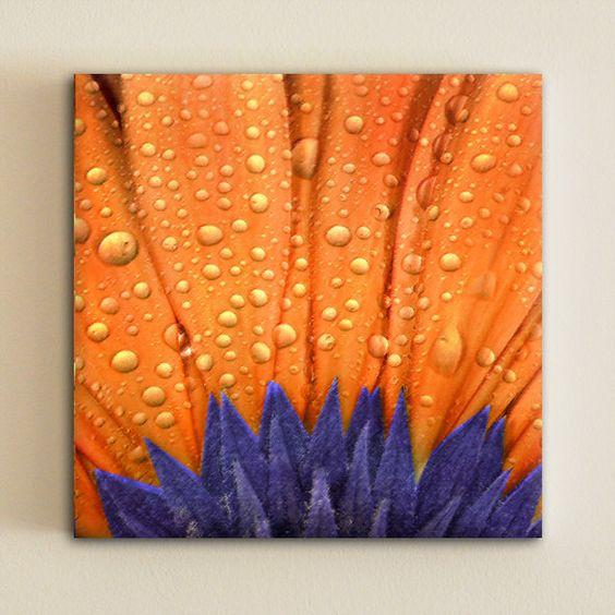 Orange blue daisy flower home decor living room by - Blue and orange living room decor ...