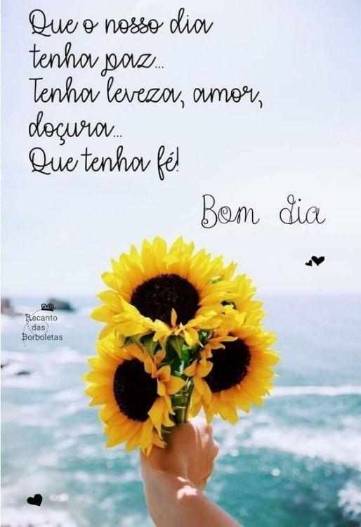 Bom Dia Frase Que O Nosso Dia Tenha Paz Tenha Leveza Amor