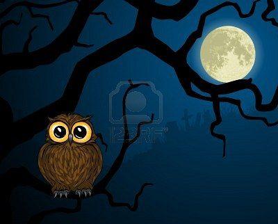 owl+moon
