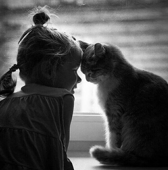 Sevgi...
