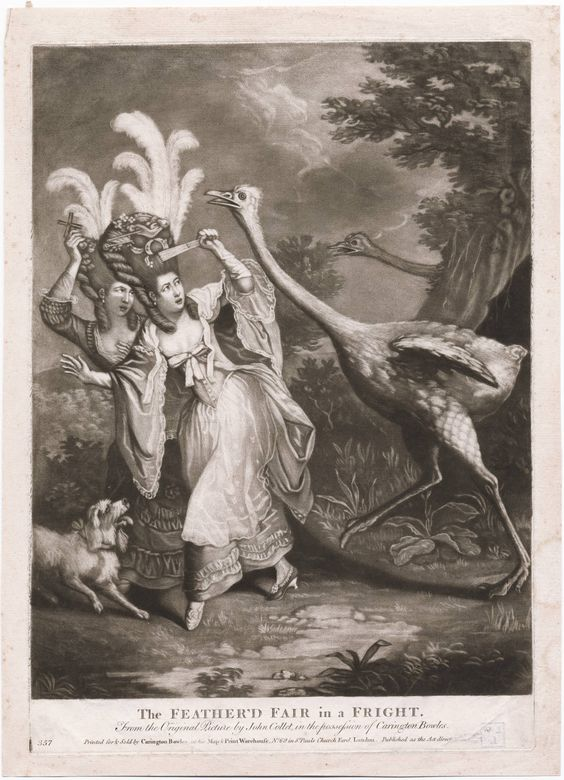 1777 The feather'd fair in a fright from the original picture by John Collet, in the possession of Carington Bowles. In a landscape setting, two young women fashionably attired, and with their elaborate hairstyles adorned with ostrich plumes, flee towards the left pursued by two angry and plucked ostriches. The foremost bird lunges at the feathers on the head of one of his victims, who wards him off with her fan while the lady's dog recoils at his approach.: