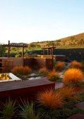 Modern landscape design with Stipa arundinacea and other drought tolerant plants