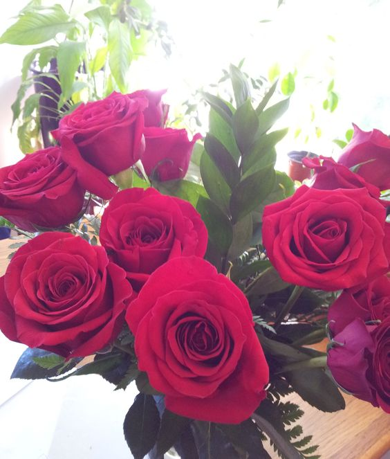 A dozen red roses. Photo by Tori Leslie:
