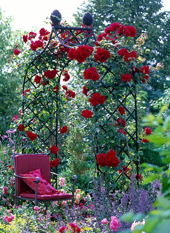 Rosenbogen mit Gartenstuhl