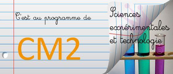 CM2 : programme scolaire de sciences expérimentales et technologie