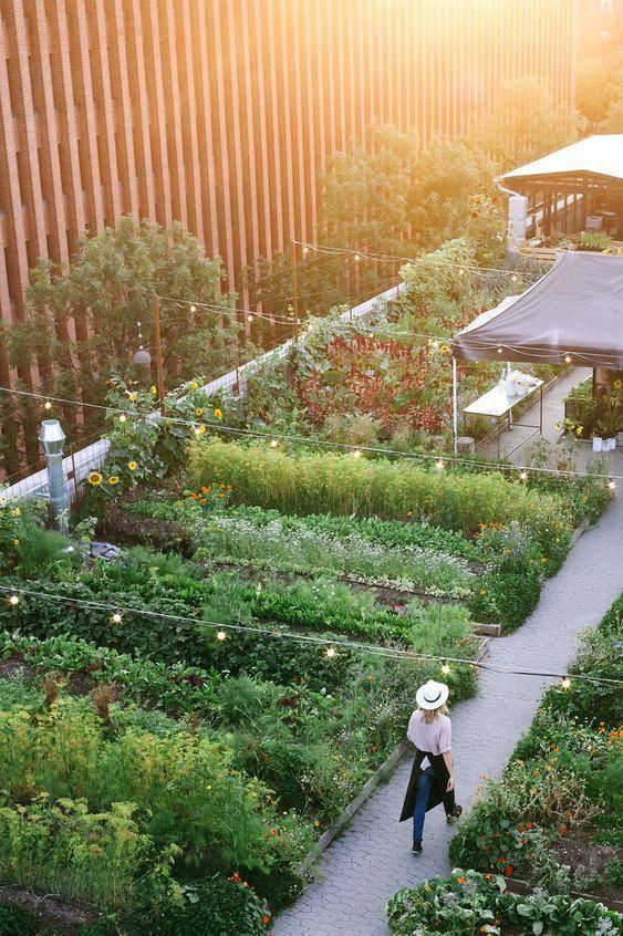 22 Beautiful Ideas For The Roof Garden Roof Garden Design Rooftop Garden Dream Garden
