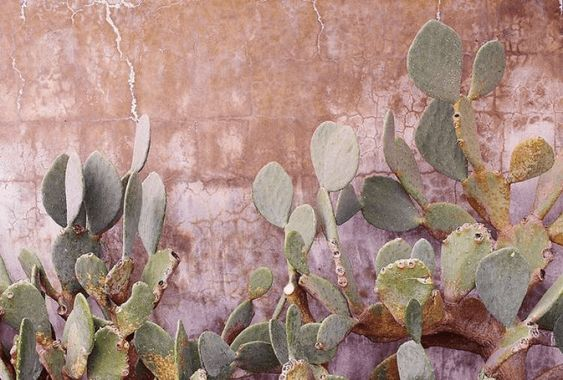 enduit mur extérieur Enduits naturels murs - chaux et argile