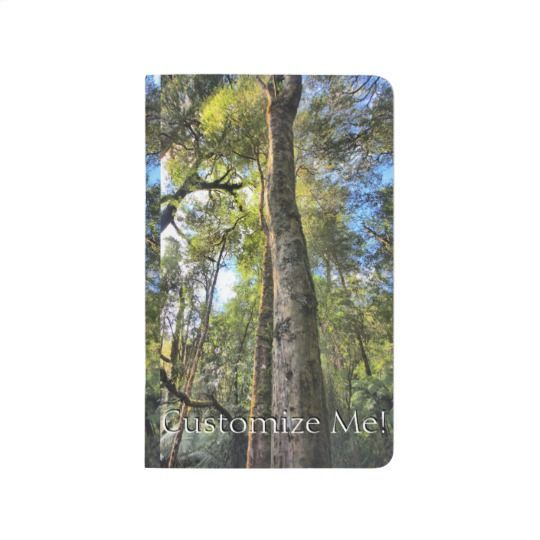 Australian Rainforest Eucalyptus Gum Trees Journal Rainforest