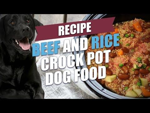 10 Homemade Dog Food Recipes That Can Save You Money Dog Food Recipes Crockpot Dog Food Recipes Homemade Dog Food Crockpot