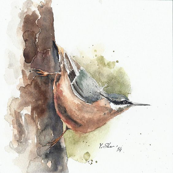 Hey, I found this really awesome Etsy listing at https://www.etsy.com/listing/178094819/watercolor-painting-original-art-bird