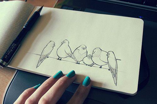 #Pájaros