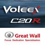 Il marchio Voleex C20R di Great Wall  #brand #voleex #GreatWall #Cars